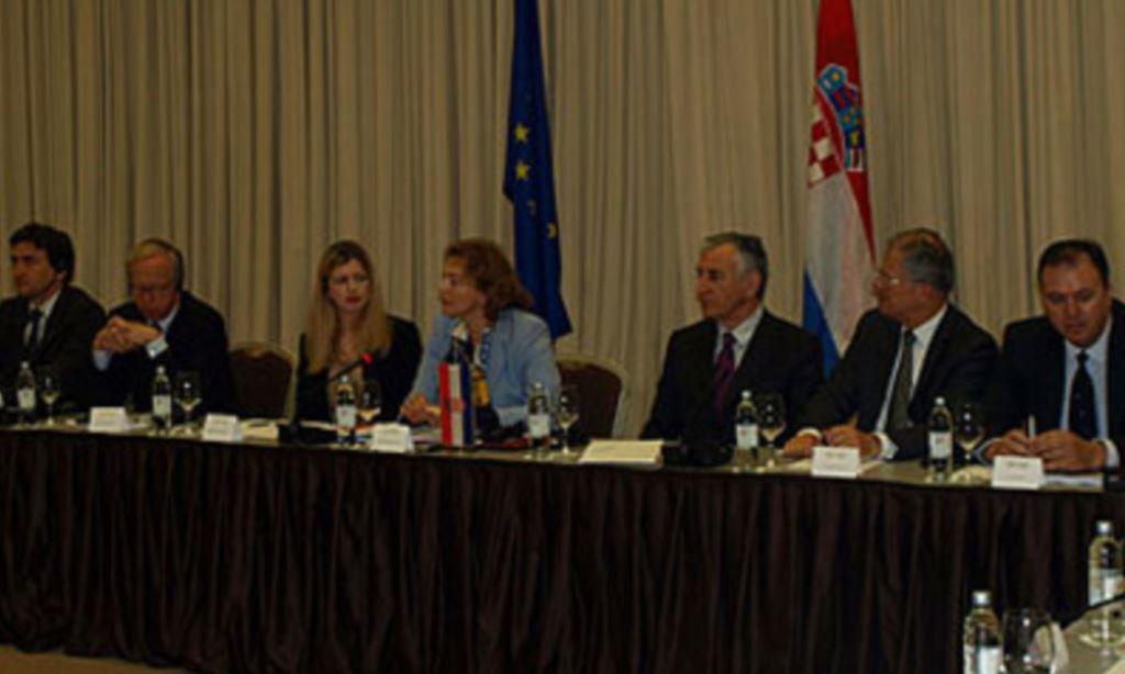 Okrugli stol zajedničkog parlamentarnog odbora