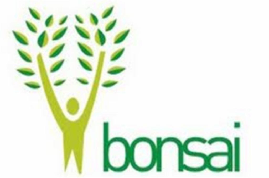Udruga Drvo mladih Bonsai iz Dubrovnika u suradnji s udrugom MI,Split održat će edukaciju za koordinatore volontera