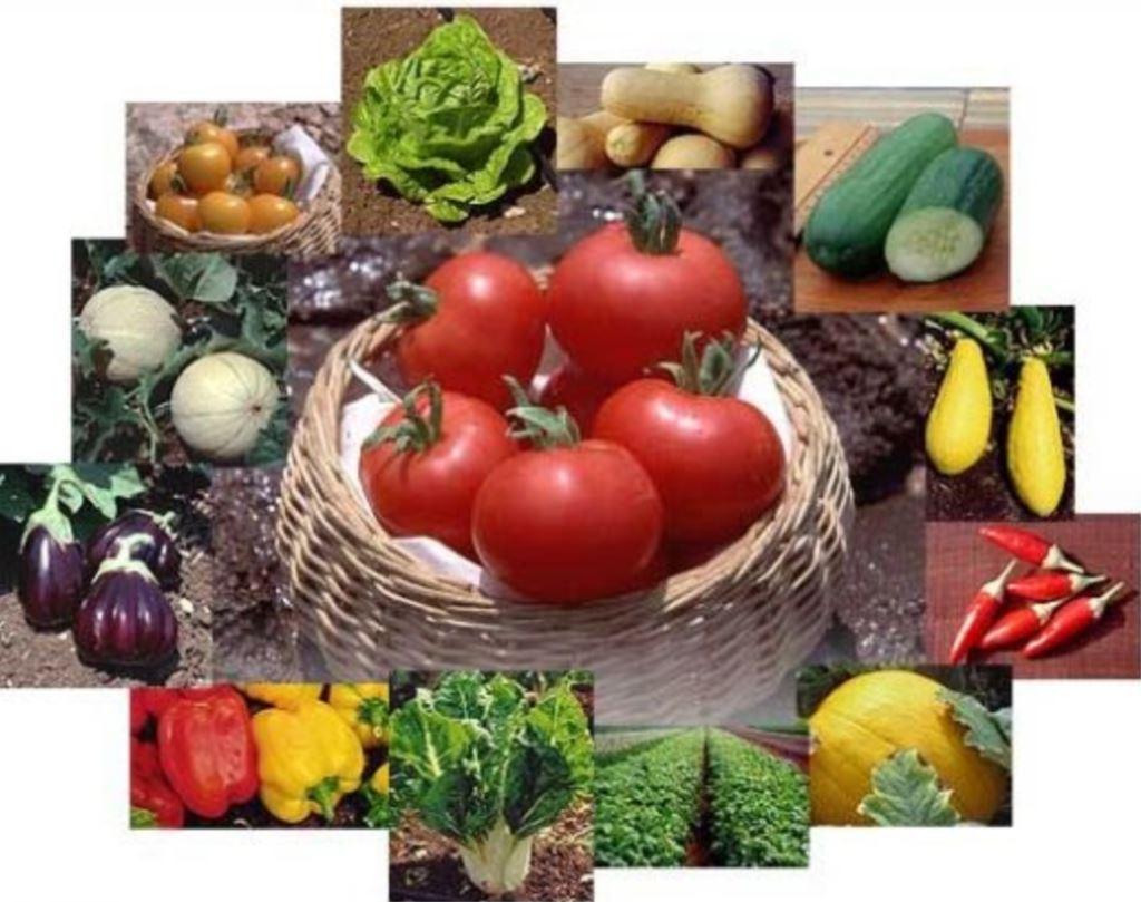 Potpora osiguranju od mogućih šteta proizvodnji u poljoprivredi